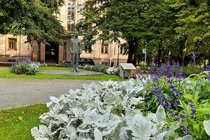 Guided tour 'Parks and shores of Tartu' – something for the soul: monument to Peeter Põld
