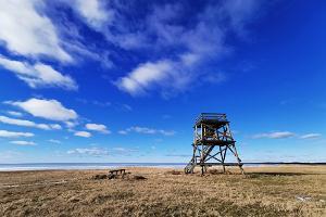 Vana-Pärnu fågelskådningstorn