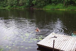 Villa River Rose ainulaadne saun