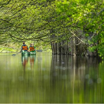 Canoeing on a river