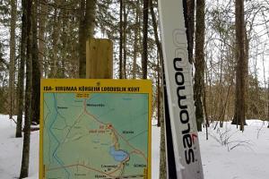 Uljaste hiking trail
