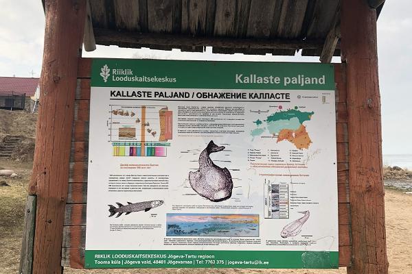 Обрыв Калласте