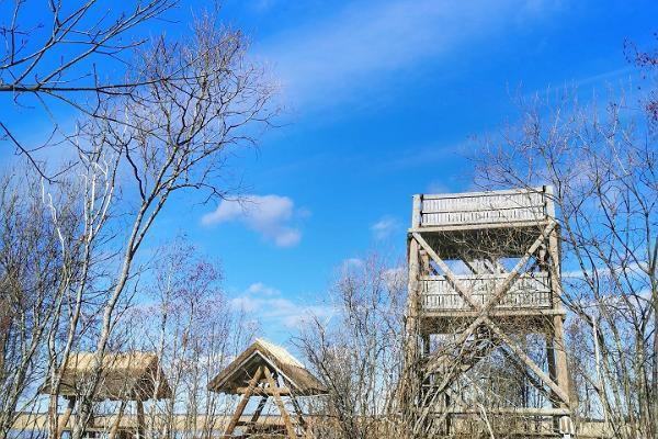 Penijõe putnu vērošanas tornis