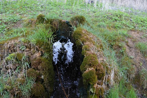 Tindioru ūdens trieces