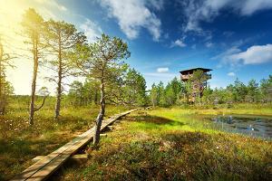 Lahemaa rahvuspark ja teabepunkt