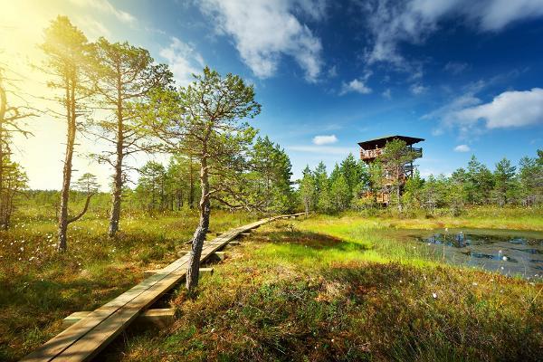 Lahemaa nationalpark och informationscentrum