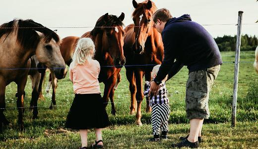 Zoodārzi un saimniecības, Visit Estonia