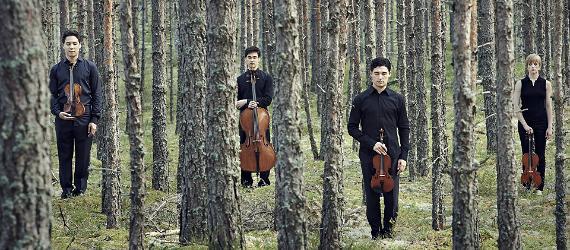 Viiuldajad seisavad viiulitega metsas puude vahel