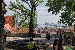Taani kuninga aed