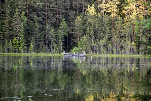 Reflection on Lake Vaikne