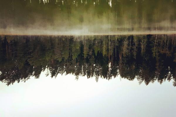 Misty Lake Vaikne