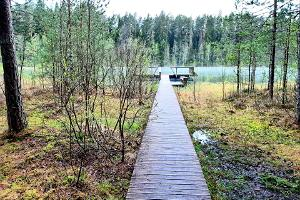 Lake Vaikne bridge for swimming
