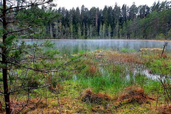Lake Vaikne