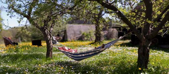 Estlands Top Instagram-Locations im Frühjahr
