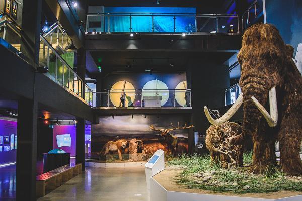 Jääaja Keskuse mammut