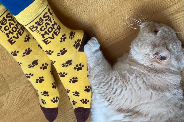 Sokisahtel BEST CAT MOM EVER puuvillased sokid