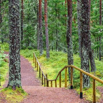 Estland ist ein nachhaltiges Naturparadies