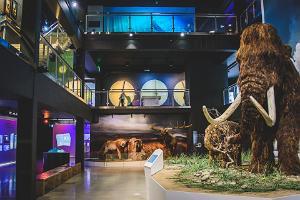 Ledus laikmeta centra mamuti