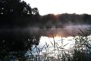 Villa River Rose Navesti jõe ääres