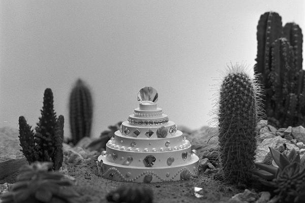 Выставка Хольгер Лоодус «Переосмысление тех старых склонов»