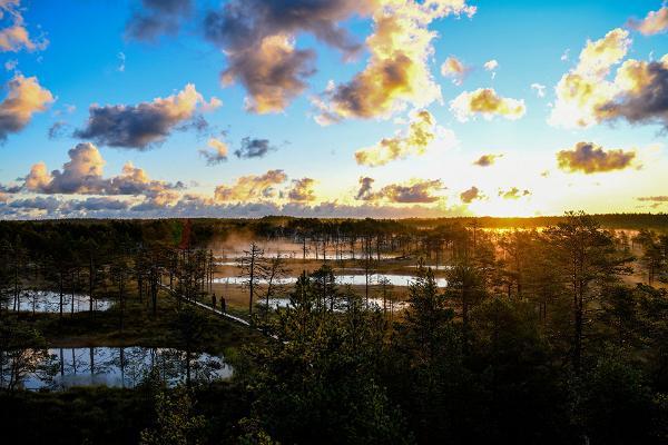 Omal käel looduse- ja kultuurirännak Harjumaal ja Lahemaa rahvuspargis