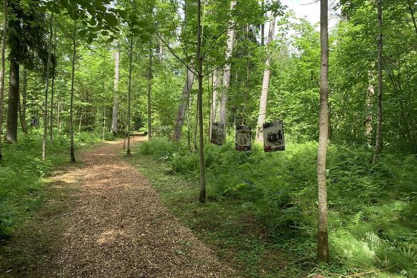 Ringreis Lõuna-Pärnumaal: avasta kaunid paigad looduses