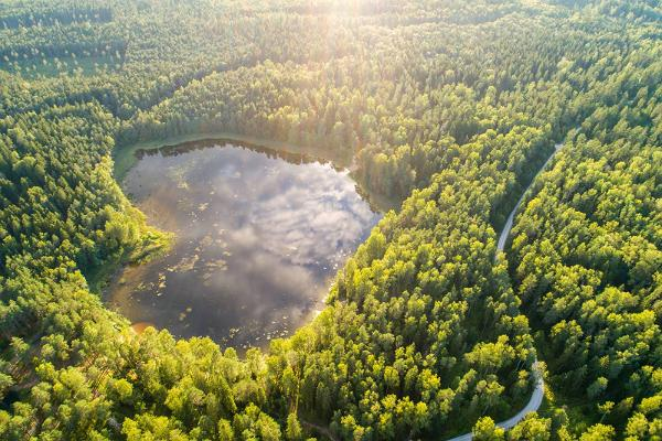 The heart-shaped lake of the Kurtna lake district
