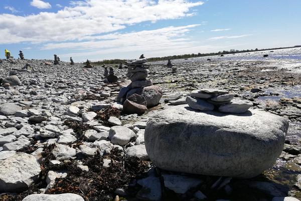 Saaremaa seiklusmäng Siil Udus