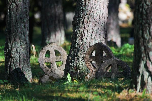 Omatoiminen pyöräreitti Vormsin saarella
