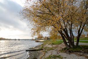 Pērnavas upes labā krasta veselības sporta taka jeb Jaansona taka