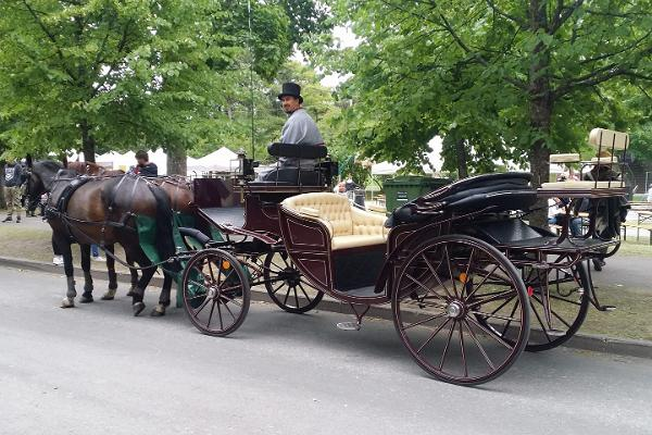 J.Kallaste elamussõidud hobustega