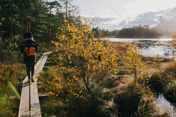 Eestimaa päikesetõusust päikeseloojanguni: Raba eri