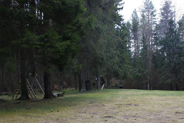 Pühajärven luontopolku, Kiigemäe