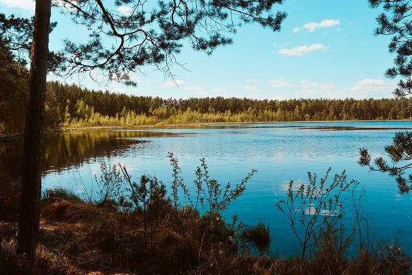Lake Valguta Mustjärv