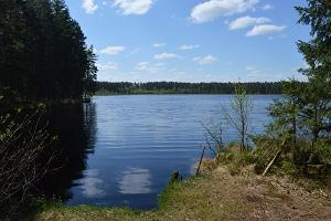 Utsikt över insjön