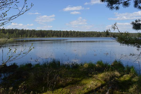 Lake Mustjärv