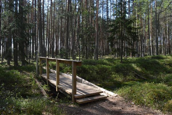 Wooden bridge to cross the ditch