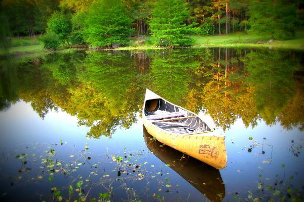 Metsajõe puhkemaja kanuumatkad