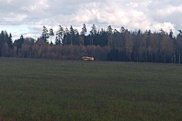 Tatra kasvatamine ja töötlemine
