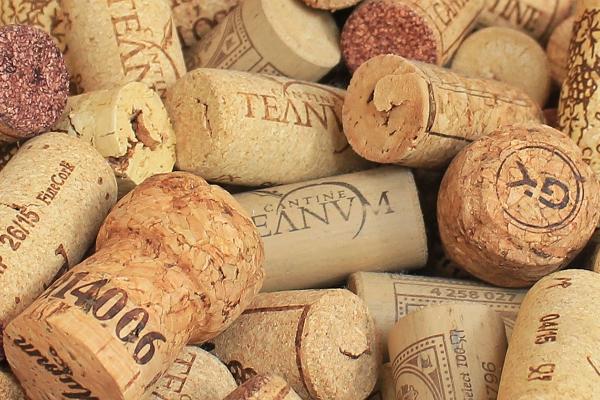 Anete veinikool