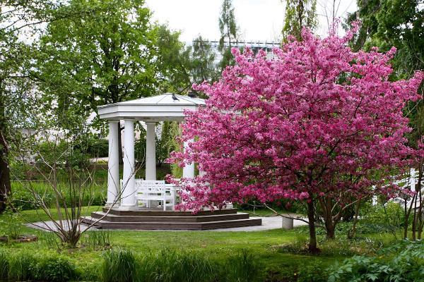 Экскурсия на природе: из Таллинна в Тарту через леса Кырвемаа: ботанический сад Тартуского университета