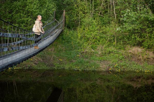 Экскурсия на природе: из Таллинна в Тарту через леса Кырвемаа: туристическая тропа Кирна