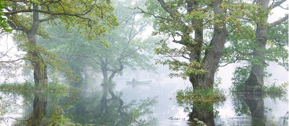 EHE ökomärgisega matkad ja üritused Eesti veekogudel