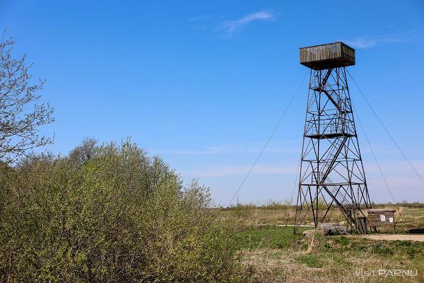 Kasari paliene un Klostri putnu vērošanas tornis