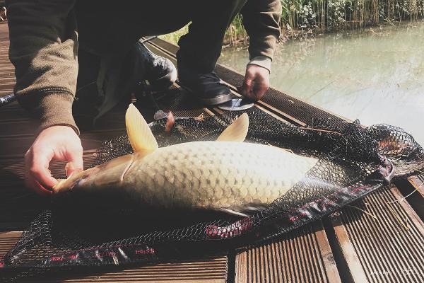 Kalastamine Laukataguse Puhkekülas