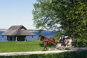 A guided walk in the Open Air Museum