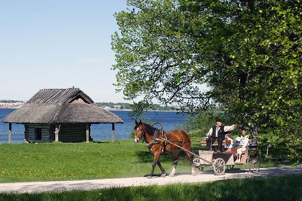 Jalutuskäik giidiga Eesti Vabaõhumuuseumis