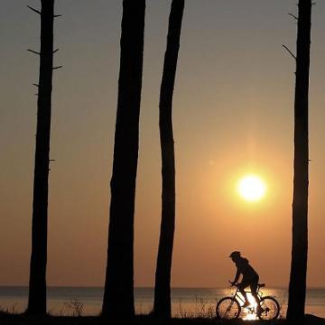 Radtouren - auf eigene Faust und geführt