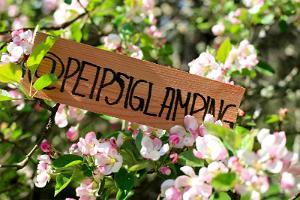 Peipsi Glamping, peipsi, glamping, kevad, õunaaed, telkimine