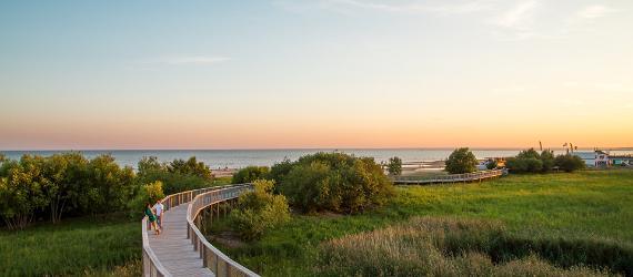 Šios vasaros kryptis – Estija